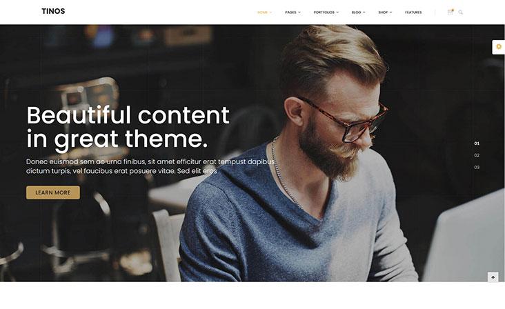 tinos free wordpress theme