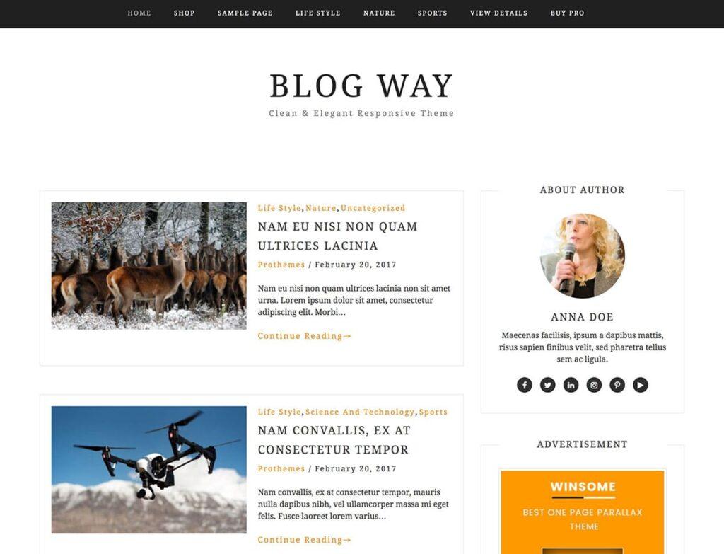 Blog Way