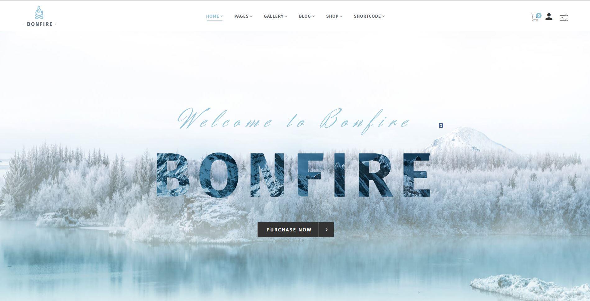 Bonfire medical Woocommerce themes