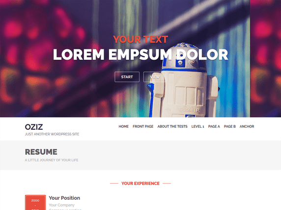 Oziz Free resume WordPress theme