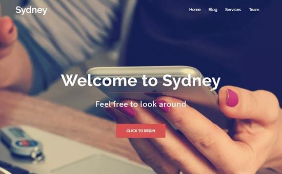 Sydney Free WordPress  themes