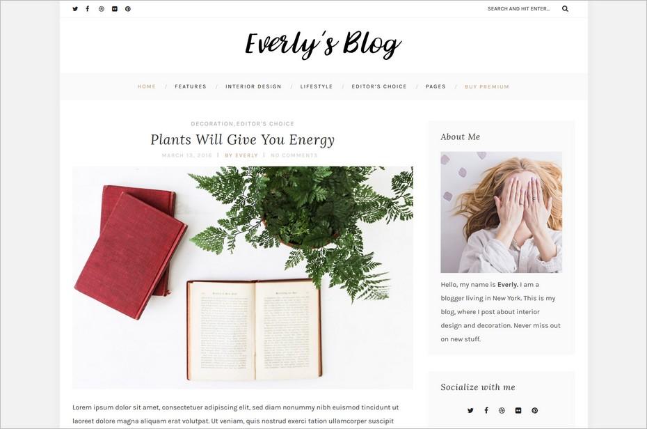 everly theme free wordpress blog themes