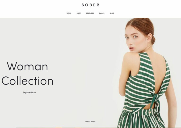 Fashion woocommerce themes