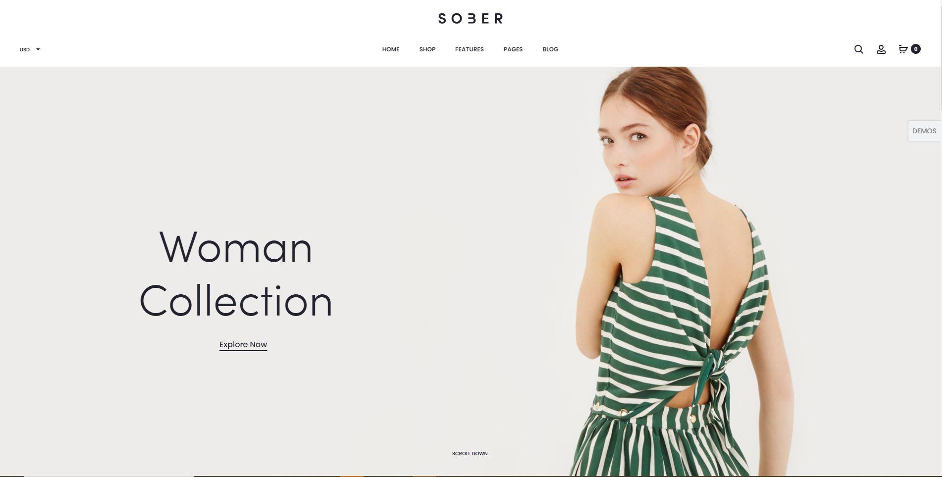Sober Fashion WooComerce themes
