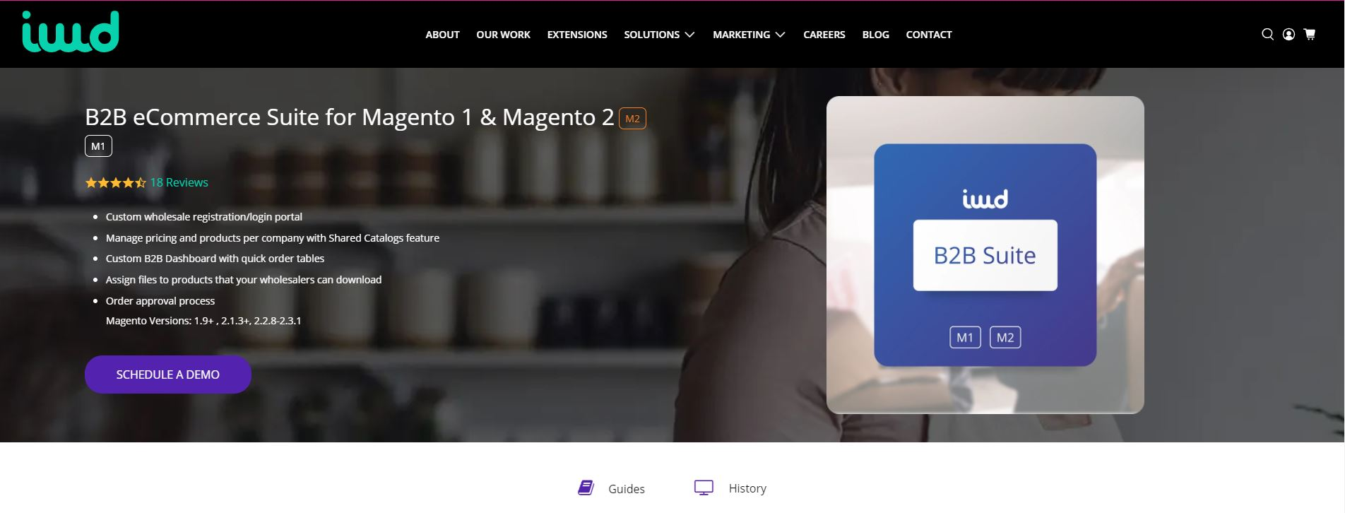 Magento b2b extension