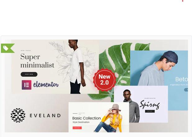 wonderful WordPress ecommerce theme