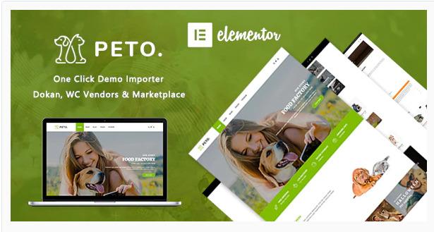 Wordpress ecommerce theme