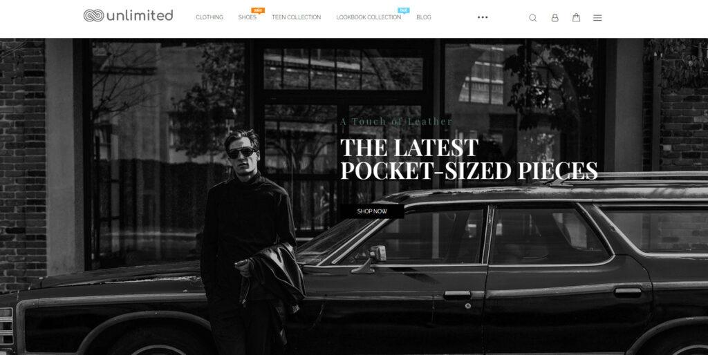 online store theme